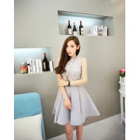 WS0075D New Korean Fashion Sexy Lace Embroidery Princess Dress